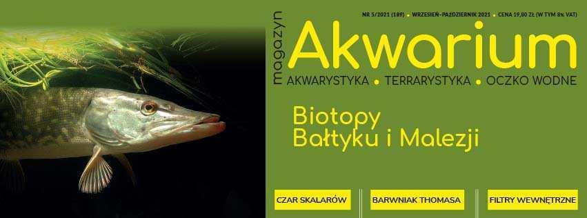 Magazyn Akwarium czasopismo 5/2021